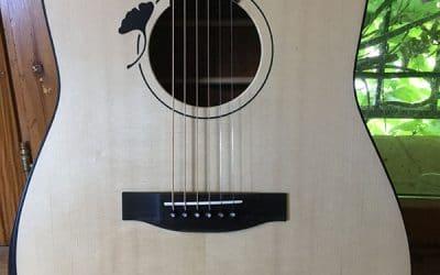 Guitarra acústica Dreadnought – Ginkgo Biloba